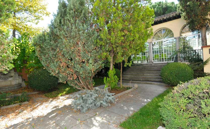 jardin-3