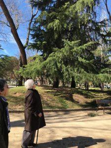 parque de la concordia (4)